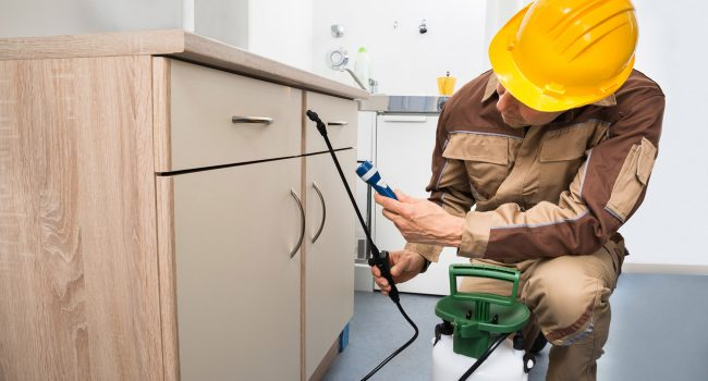 2019 Absolute Property Solutions Services - Maintenance and Service 001